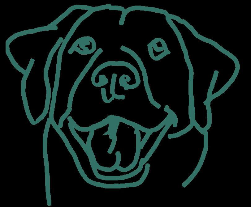 Рисунок для вышивки Собака